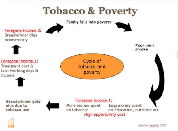 essay on tobacco use