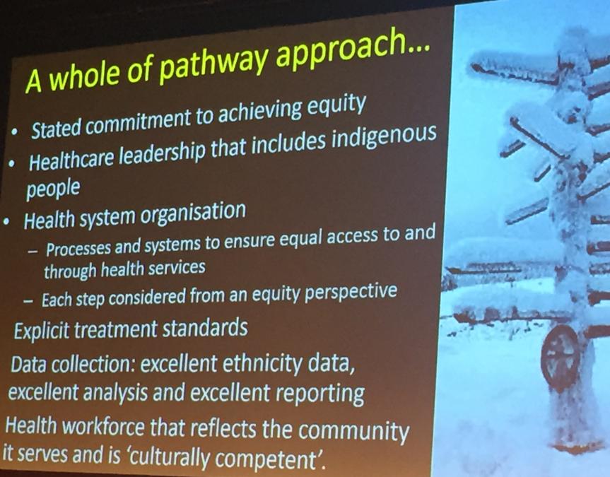 maori comorbidy whole of pathway