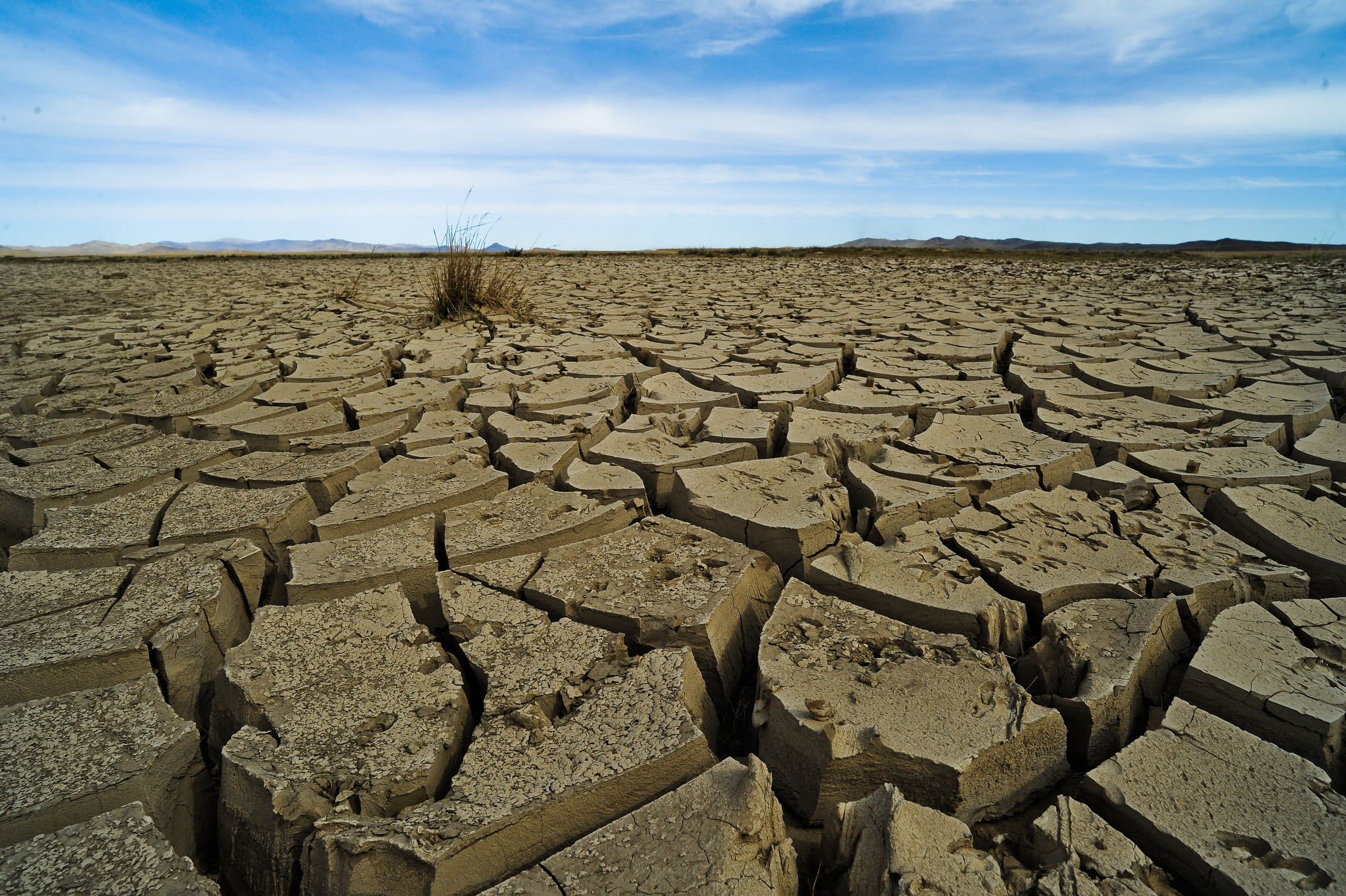 Why has climate change disappeared from the Australian election radar?