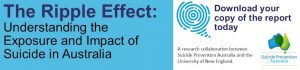 the-ripple-effect-report-banner