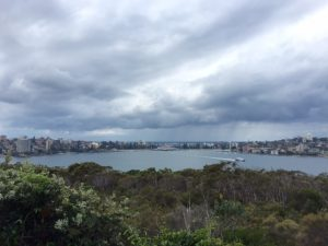 A section of the walk: looking back to Manly
