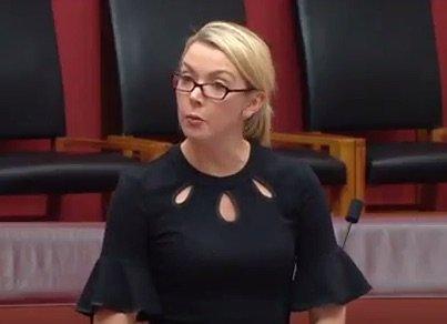 Senator Sue Kakoschke-Moore addresses the Senate.