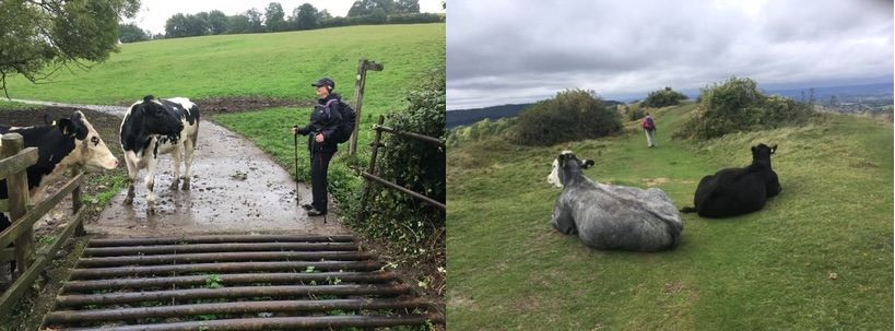 Walking the Cotswold Way - share another journey with #CroakeyEXPLORE