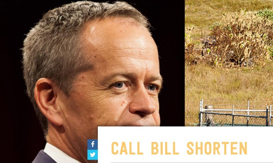 Fury over fracking overshadows Labor's news on Aboriginal and Torres Strait Islander health