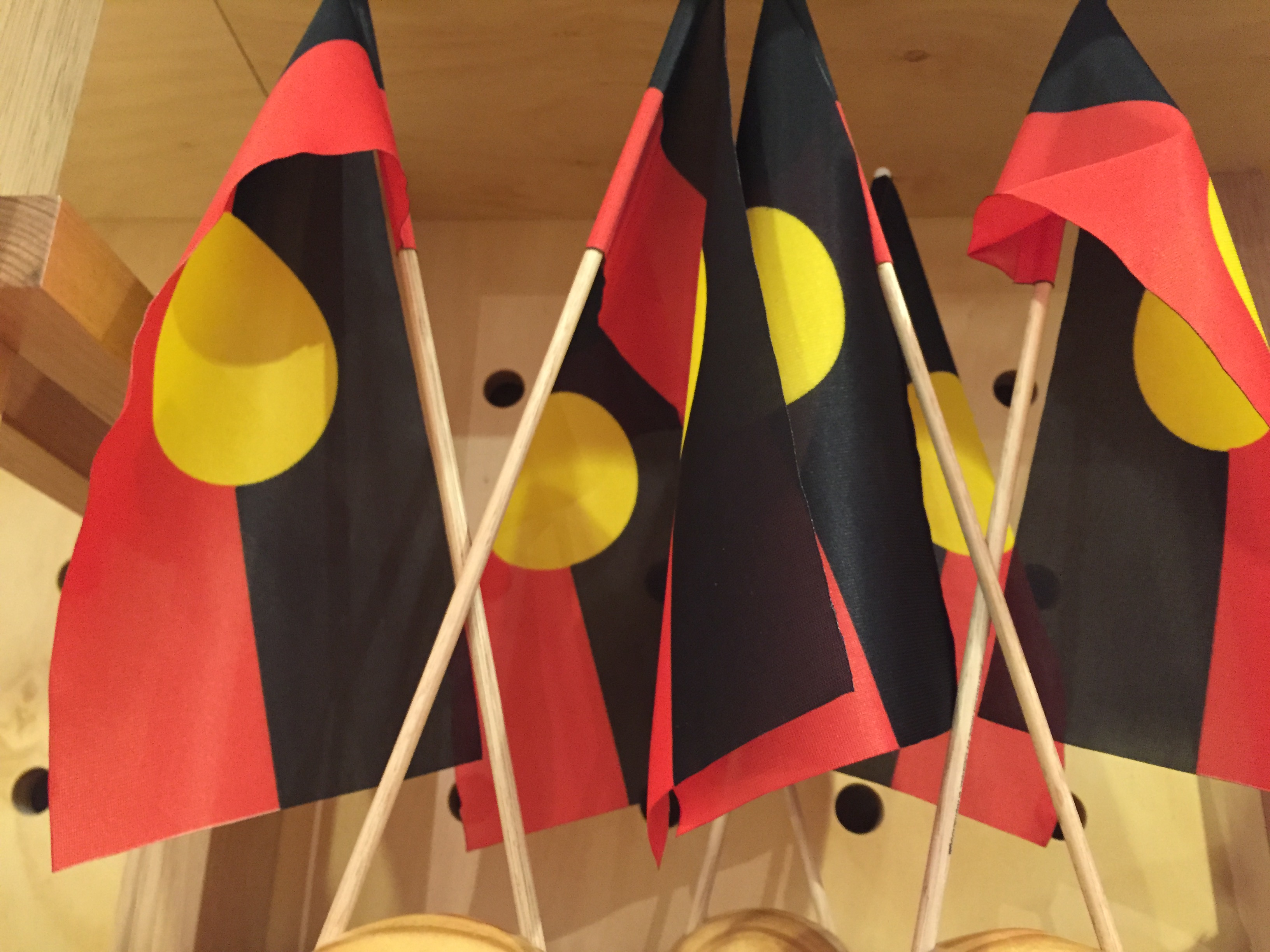 Avoiding 'Othering': How should disability policy be established with Indigenous people?